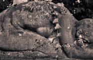 "Thumbnail voor Omgaan met de dood: ""Het boeddhisme is geen EHBO-kit"""
