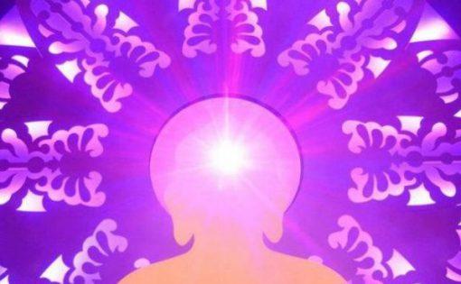 Thumbnail voor Awake: mediteren met Sogyal Rinpoche