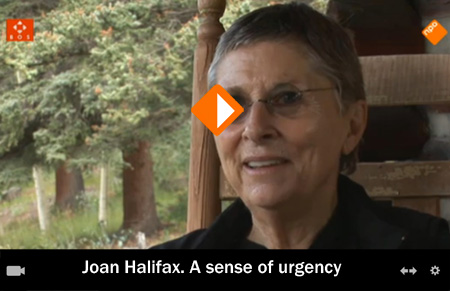 Joan Halifax. A sense of urgency