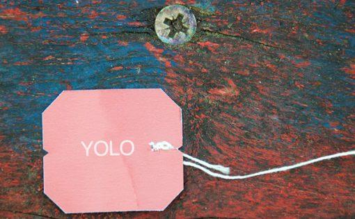Thumbnail voor Mens durf te leven: boeddhisme en de YOLO-drang.