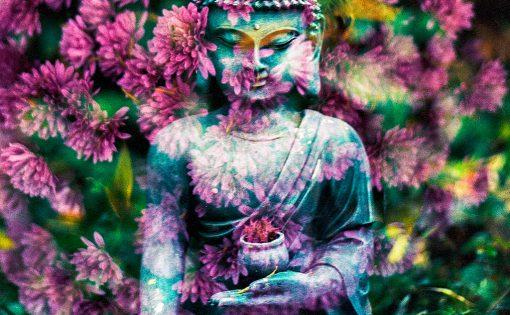 Thumbnail voor Een groene Boeddha: De Bloemenpreek