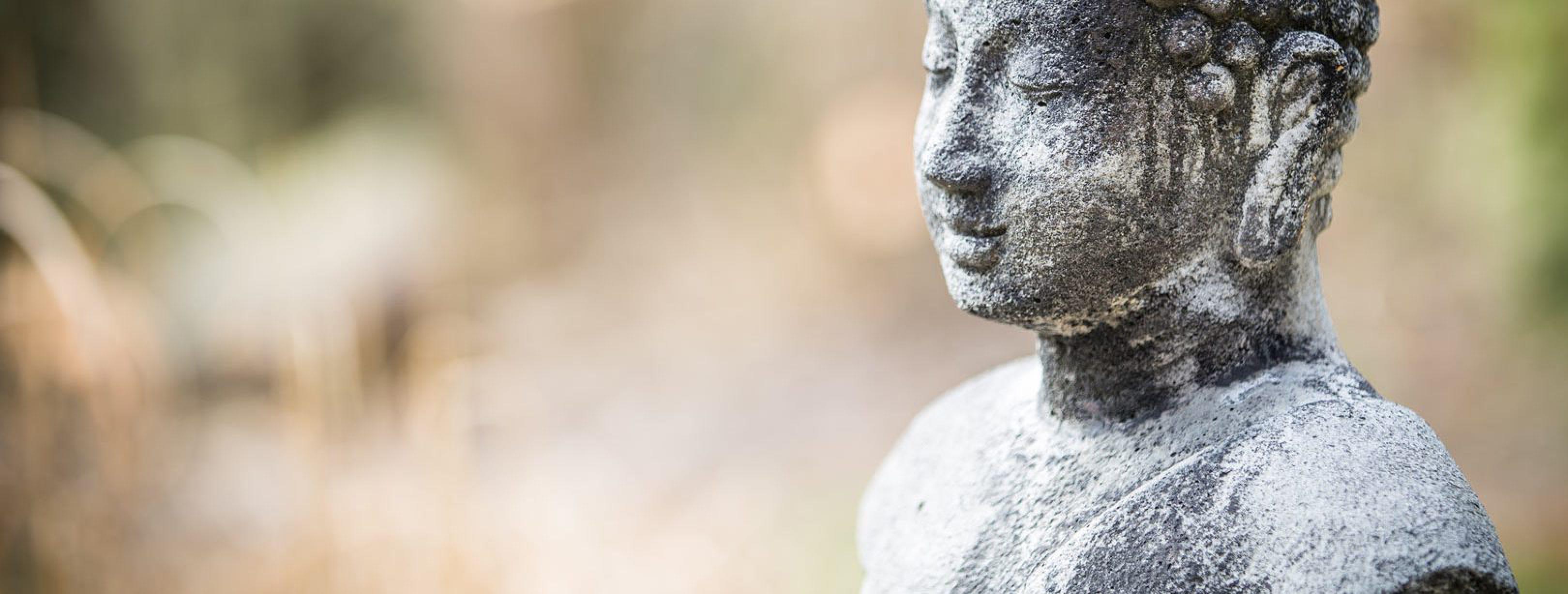 kritiek mindfulness hype