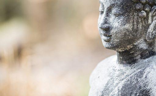 Thumbnail voor Wat vinden boeddhisten van de kritiek op mindfulness?