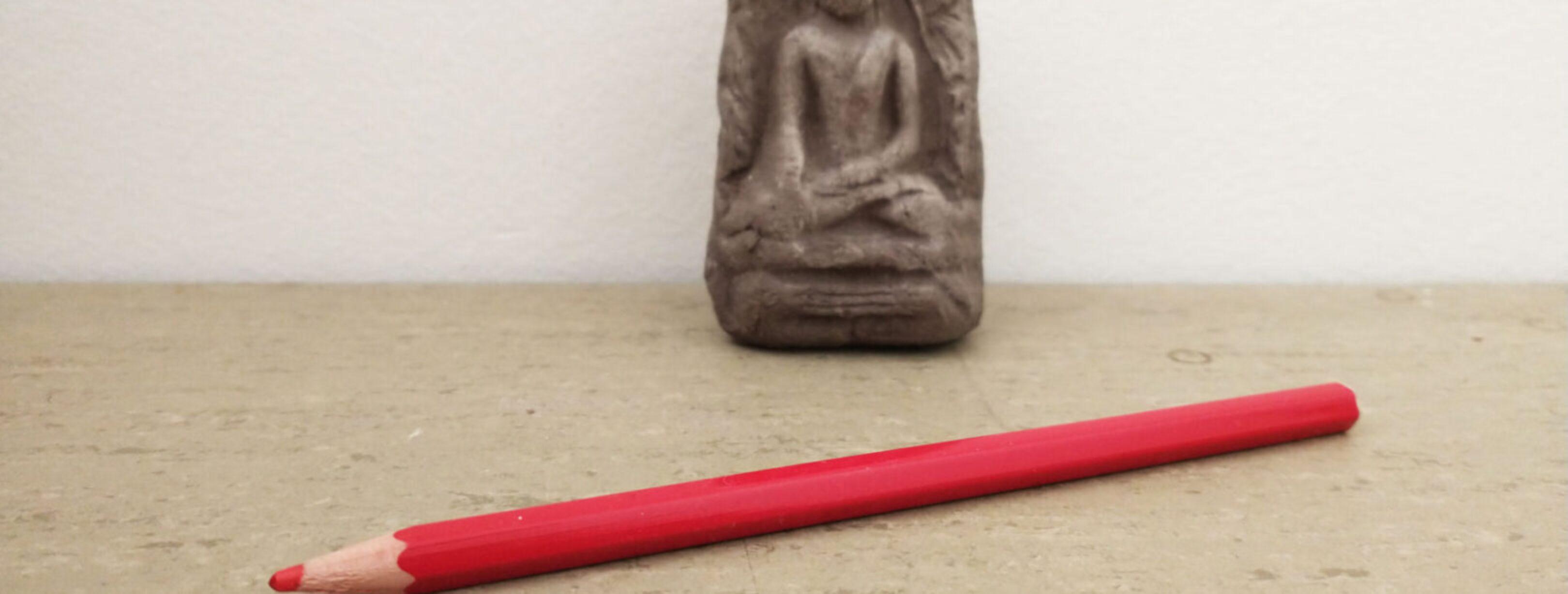 stemadvies-van-boeddhisten