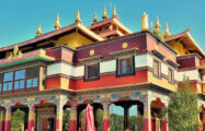 Thumbnail voor Hoe boeddhistisch leeft Jochem Meerburg anno 2020?