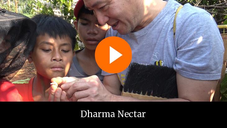Dharma nectar op NPO