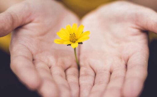 Thumbnail voor Boeddhistische praktijken: Dzogchen