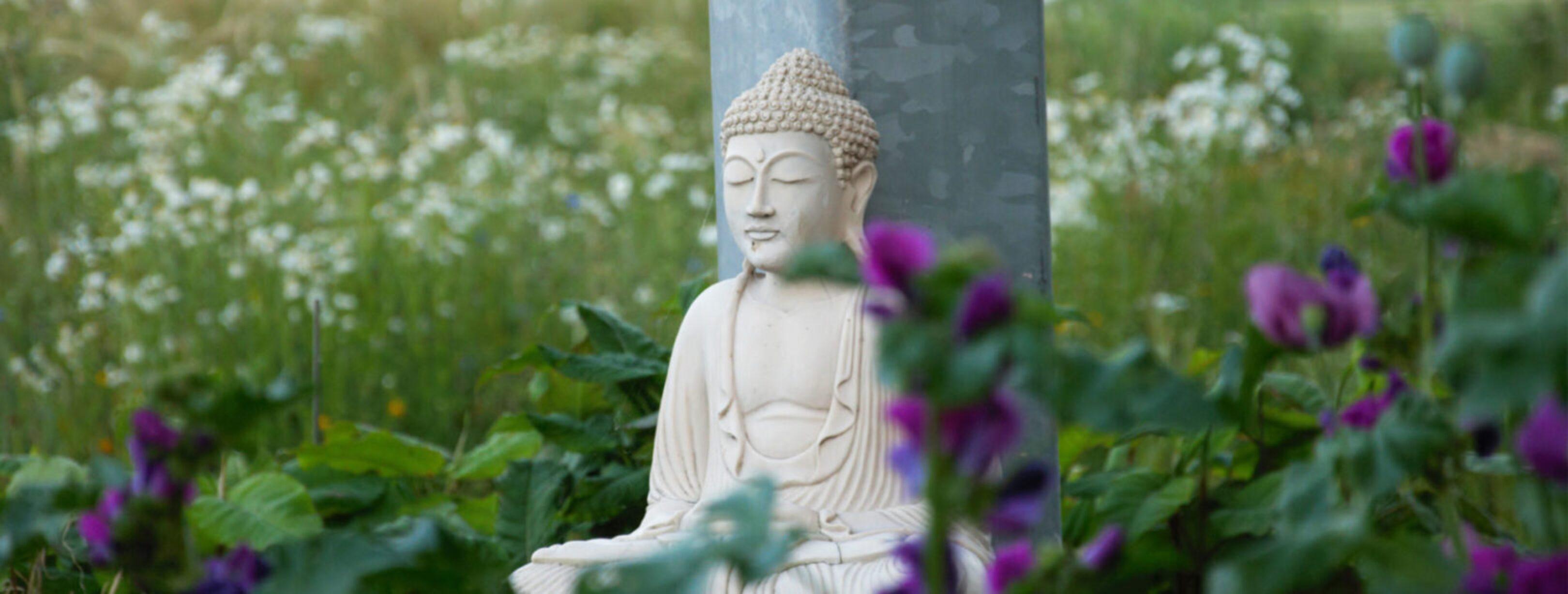 spiritualiteit-en-de-natuur