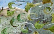 Thumbnail voor Zen weekkalender: De woensdag van Wodan de Woedende